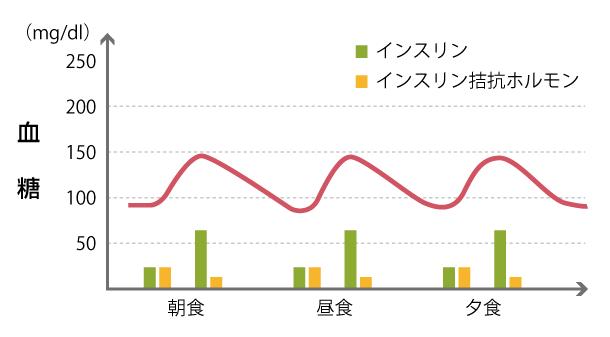 血糖値、インスリン、インスリン拮抗ホルモンの変化の図