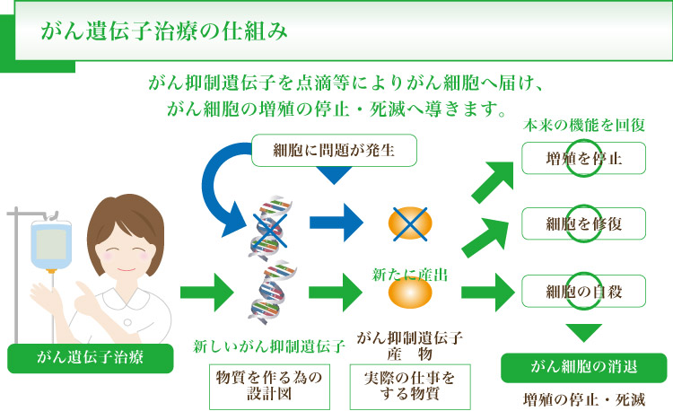 がん遺伝子治療の仕組み